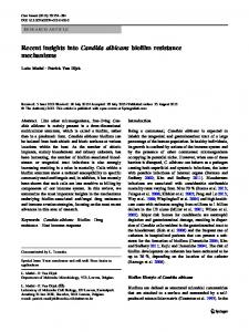Recent insights into Candida albicans biofilm ... - BioMedSearch