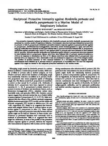 Reciprocal Protective Immunity against Bordetella pertussis and ...
