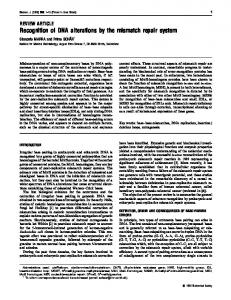 Recognition of DNA alterations by the mismatch repair system - NCBI