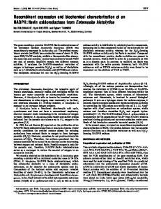 Recombinant expression and biochemical characterization of an ...