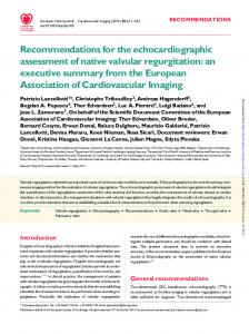 Recommendations for the echocardiographic assessment of native ...