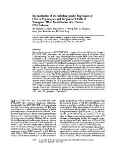 Reconstitution of the Subclass-specific Expression of CD4 in ...