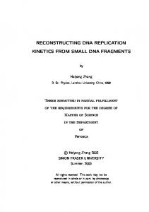 reconstructing dna replication kinetics from small dna