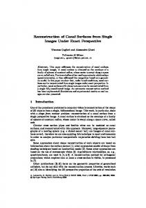 Reconstruction of Canal Surfaces from Single Images Under Exact ...