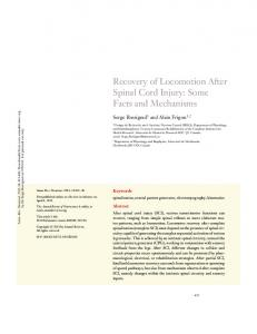 Recovery of Locomotion After Spinal Cord Injury