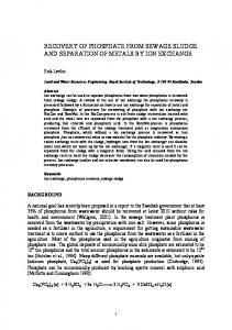 recovery of phosphate from sewage sludge and ... - Erik Levlin