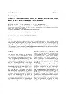 Recovery of the seagrass Zostera marina in a disturbed ...