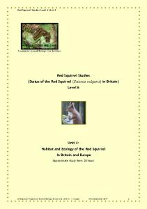 Red Squirrel Studies Unit 4 sample