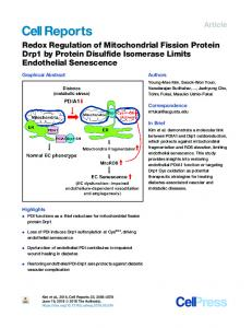 Redox Regulation of Mitochondrial Fission Protein Drp1 by Protein ...