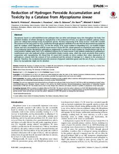 Reduction of Hydrogen Peroxide Accumulation and Toxicity by ... - PLOS
