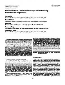 Reduction of Iron Oxides Enhanced by a Sulfate-Reducing Bacterium ...