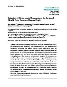 Reduction of Nitroaromatic Compounds on the Surface of Metallic Iron