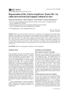 Regeneration of lily (Lilium longiflorum 'Easter lily') by callus derived ...