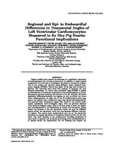 Regional and Epi to Endocardial Differences in ... - Wiley Online Library