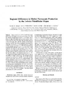 Regional Differences in Methyl Farnesoate Production by the Lobster ...