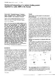 regulated by cyclic AMP in the thyroid - Europe PMC