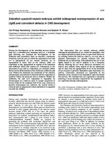 Regulation of ace (fgf8) expression in zebrafish aussicht mutant ... - UCL
