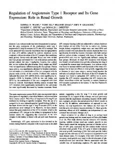 Regulation of Angiotensin Type 1 Receptor and Its Gene Expression ...
