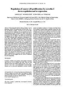 Regulation of cancer cell proliferation by caveolin-2 down-regulation ...