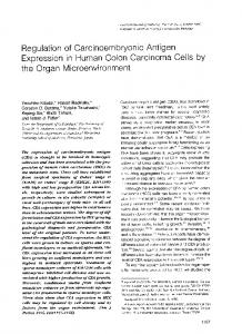 Regulation of carcinoembryonic antigen expression in human colon ...