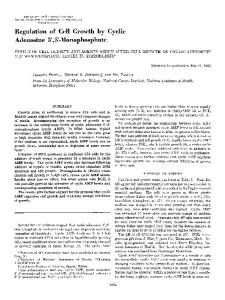 Regulation of Cell Growth by Cyclic Adenosine 3', 5'-Monophosphate ...