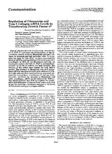 Regulation of fibronectin and type I collagen mRNA levels by ...