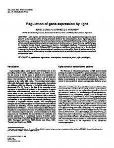 Regulation of gene expression by light - Semantic Scholar