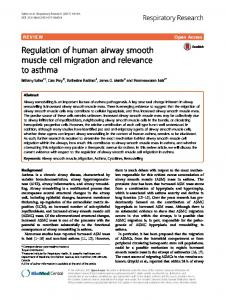 Regulation of human airway smooth muscle cell