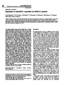 Regulation of microRNA expression by HMGA1 proteins - Nature