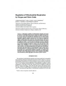 Regulation of Mitochondrial Respiration by Oxygen and Nitric ... - NYAS