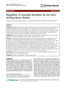 Regulation of myotube formation by the actin-binding ... - CiteSeerX