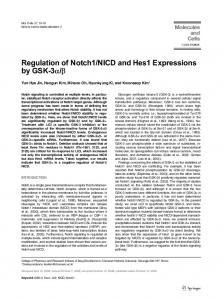Regulation of Notch1/NICD and Hes1 Expressions by ... - Springer Link