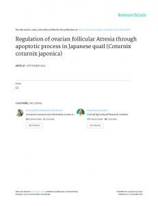 Regulation of ovarian follicular Atresia through ...