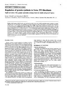 Regulation of protein synthesis in Swiss 3T3 fibroblasts. Rapid ...