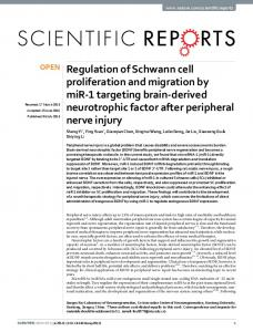 Regulation of Schwann cell proliferation and migration by miR-1 ...