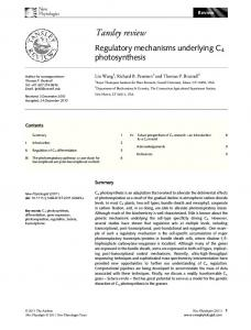 Regulatory mechanisms underlying C4 ... - Wiley Online Library