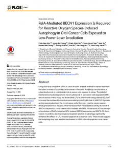 RelA-Mediated BECN1 Expression Is Required for ... - Semantic Scholar