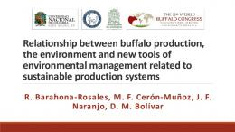 Relationship between buffalo production, the ...