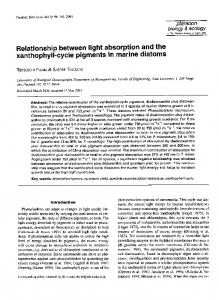 Relationship between light absorption and the