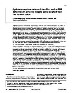 relaxant function and mRNA detection in smooth muscle cells isolated ...