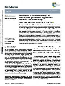 Remediation of trichloroethene (TCE)-contaminated groundwater by ...