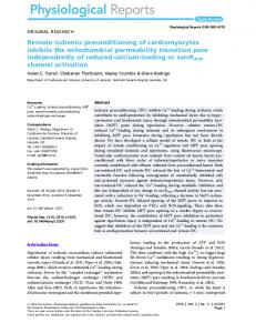 Remote ischemic preconditioning of cardiomyocytes inhibits the ...