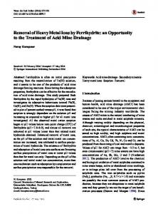 Removal of Heavy Metal Ions by Ferrihydrite: an