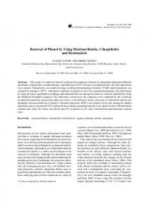 Removal of Phenol by Using Montmorillonite ... - Springer Link