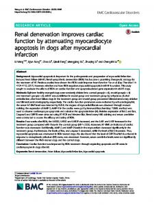 Renal denervation improves cardiac function by attenuating ...