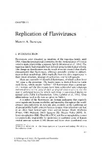 Replication of Flaviviruses - Springer Link