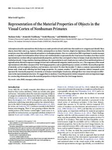 Representation of the Material Properties of Objects in the Visual ...