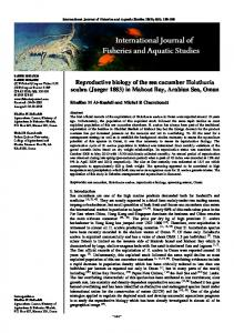 Reproductive biology of the sea cucumber Holothuria scabra (Jaeger