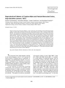 Reproductive Patterns of Captive Male and Female Monocled Cobra ...