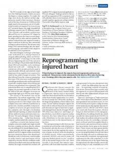 Reprogramming the injured heart - Nature